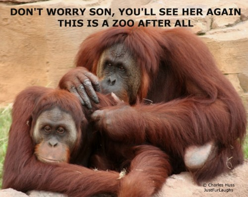 Don't Worry Son