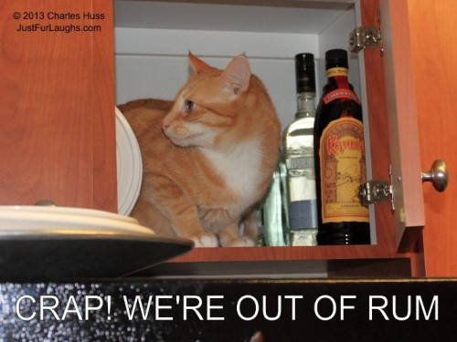 Crap, We're out of Rum