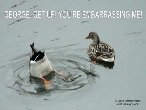 George, get up! You're Embarrasing Me