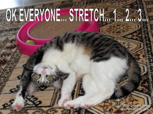 OK Everyone... Stretch...