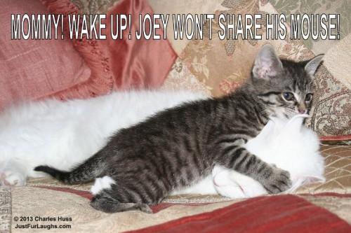 Mommy Wake Up