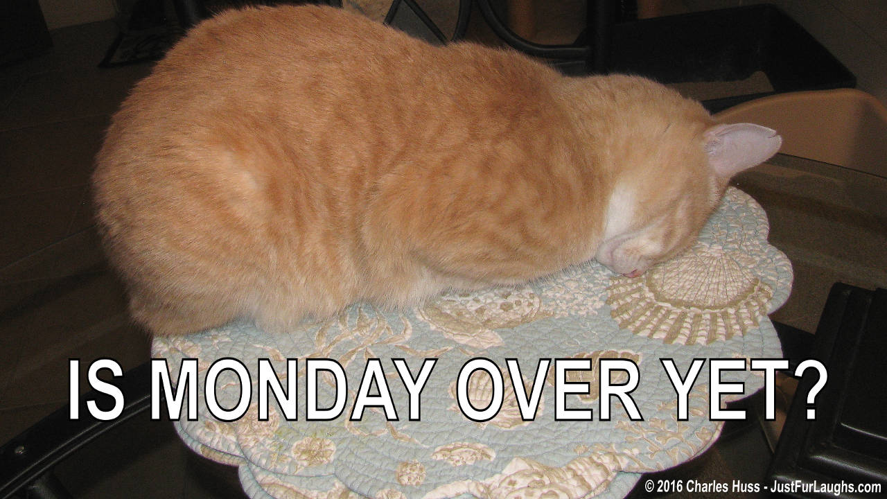 is-monday-over